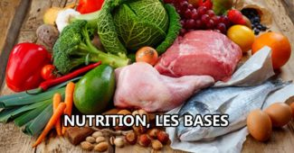 Nutrition, les bases