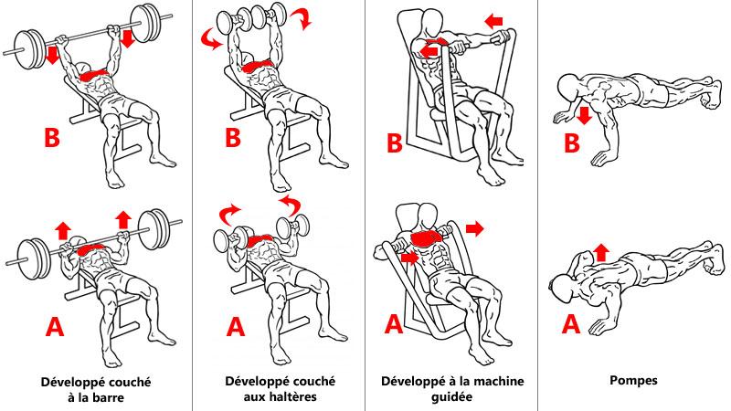 Exercices pour cibler le milieu des pectoraux