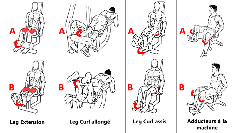 Exercices pour l'isolation des jambes