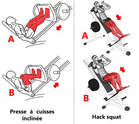 Exercices de base à la machine ciblant les jambes