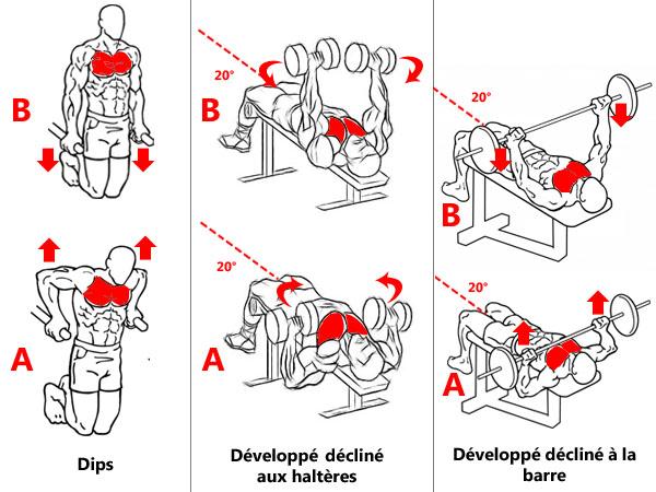 Exercices ciblant le bas des pectoraux